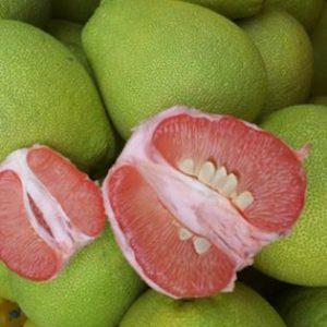 台灣紅文旦柚(NEW)