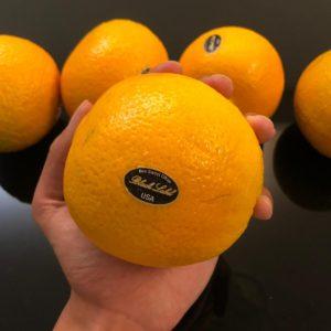 黑牌蜜蜂橙 (超人氣產品)🔥