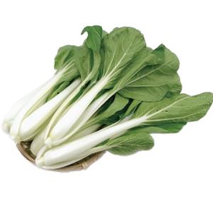 有機黑葉白菜 ( NEW )