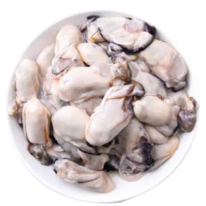 韓國急凍蠔肉(NEW)